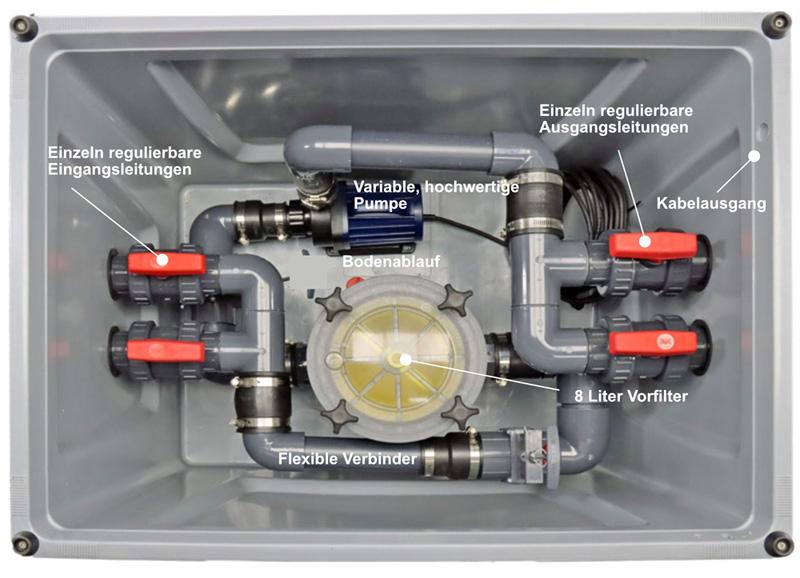 Innerer Aufbau der Pumpenkammer